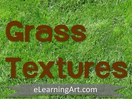 Texture-Grass