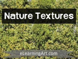 Texture-Nature
